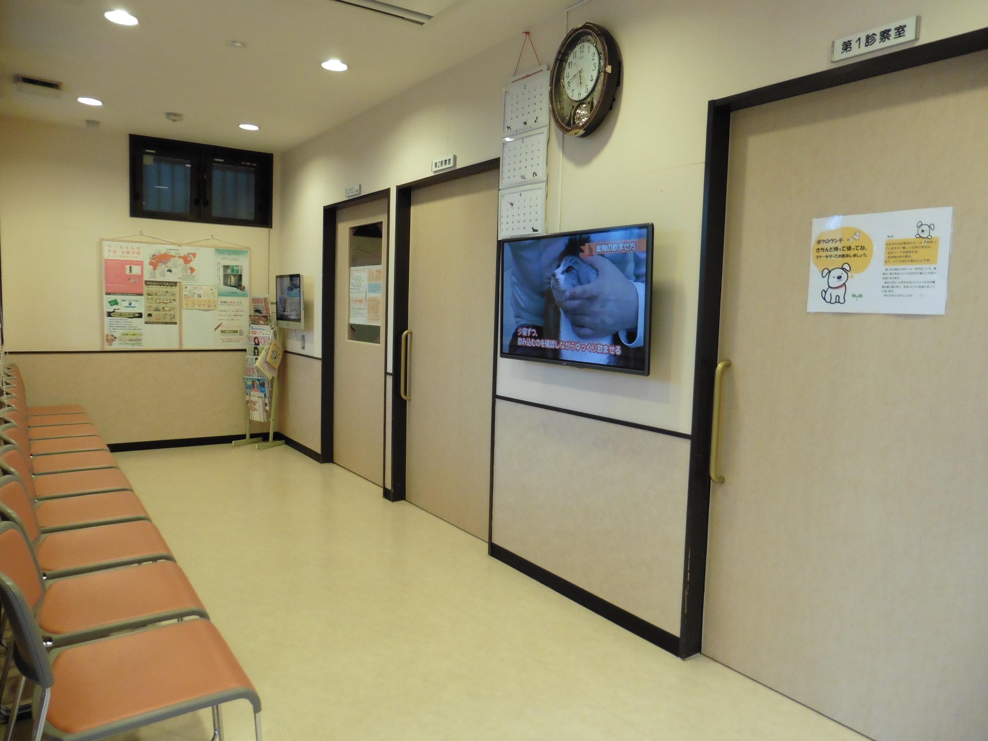 ブンブン 動物 病院