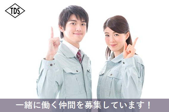 株式会社東興電機製作所/TOKO DS