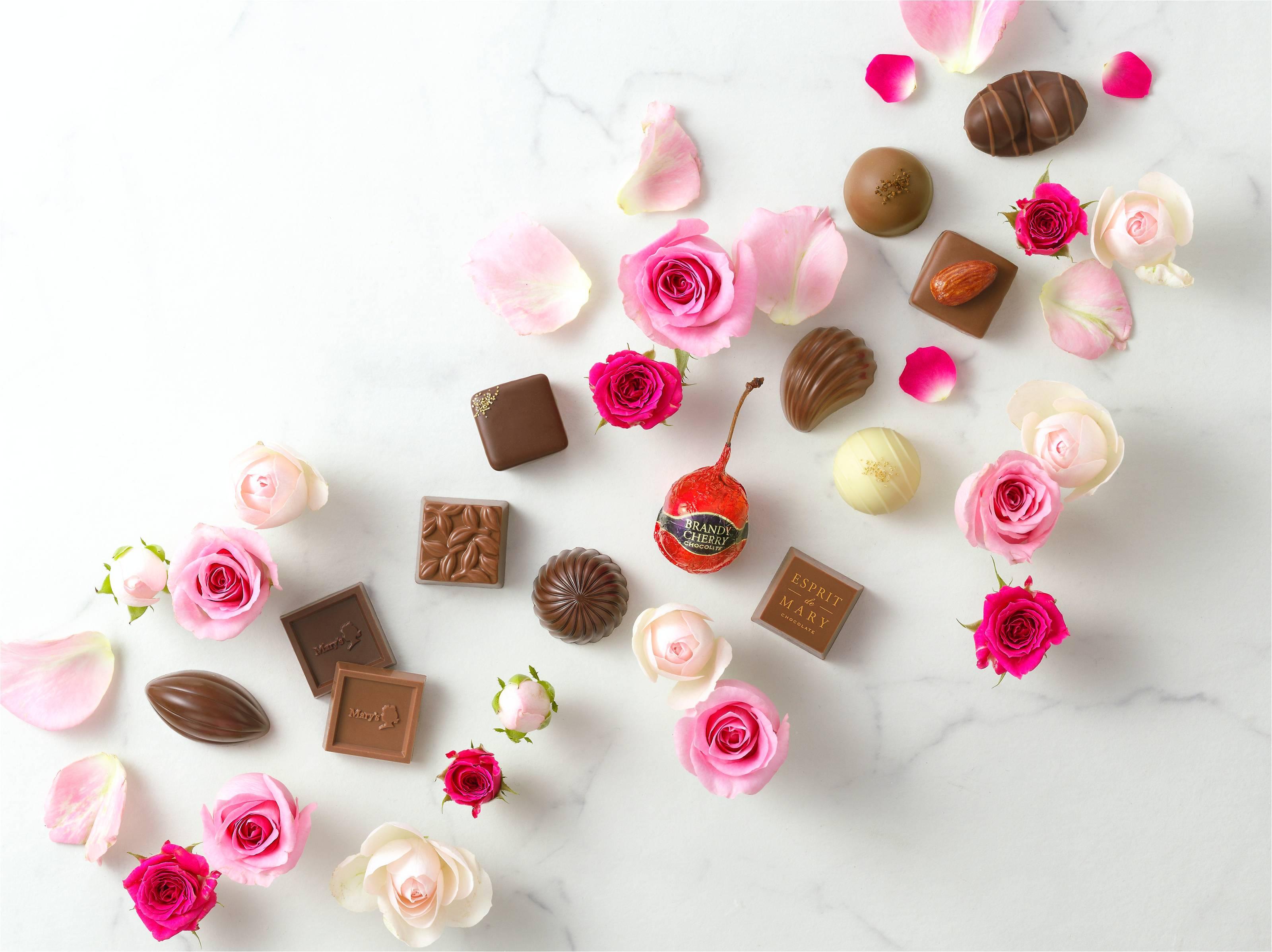 株式会社メリーチョコレートカムパニー