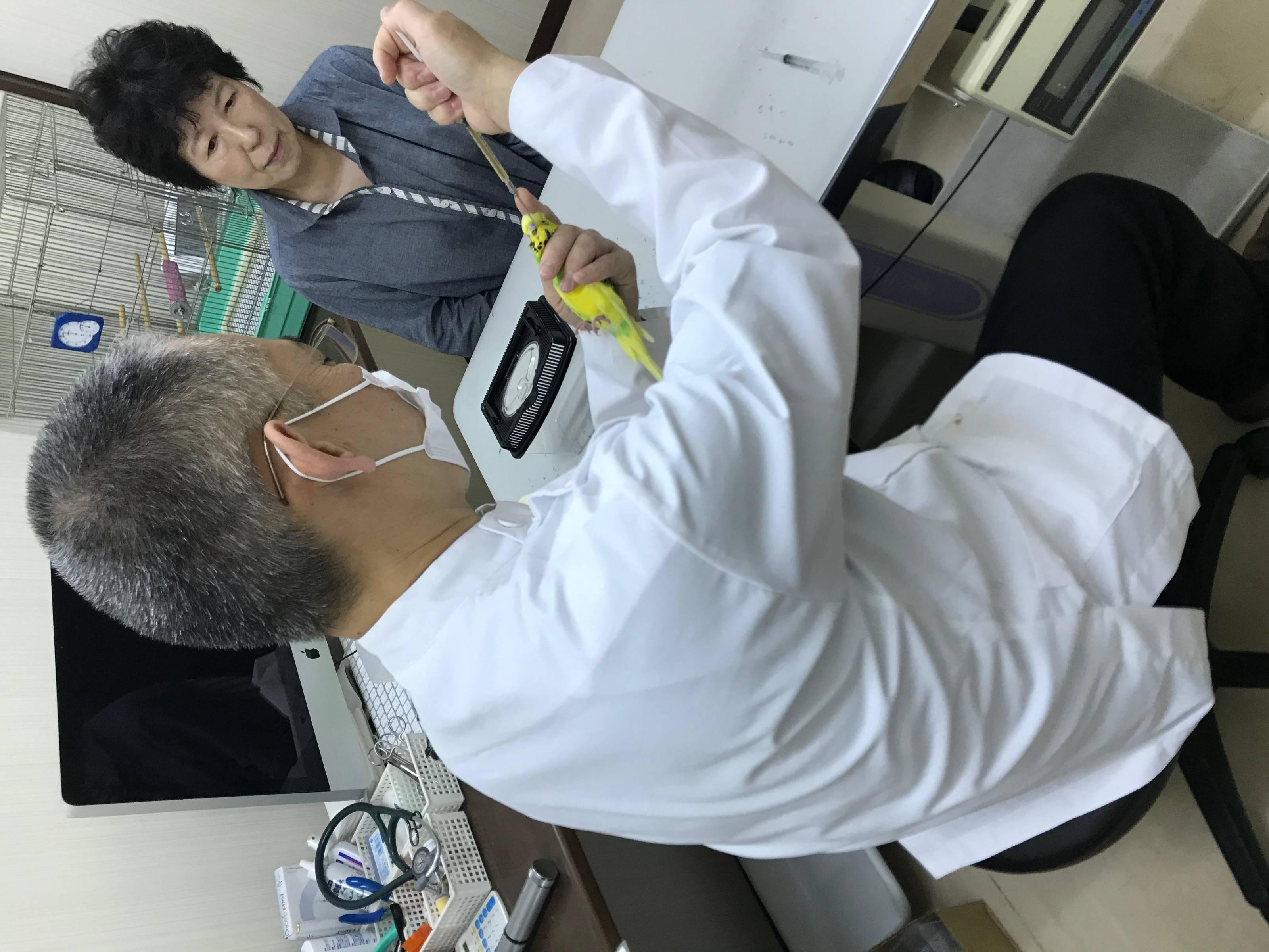 大阪のペットクリニック‐キキ動物病院