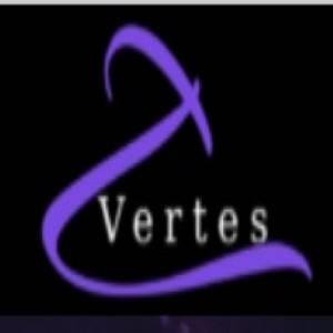 株式会社Vertes