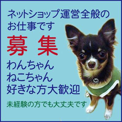 株式会社トクダ