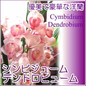Flower, Green & Design 薫る花