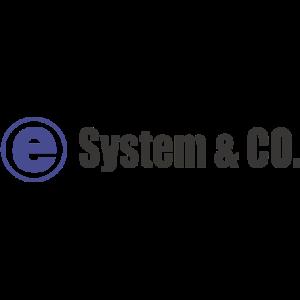 株式会社e-system