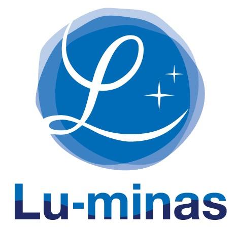 株式会社ルーミナス